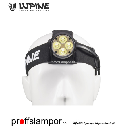 Pannlampa Lupine Wilma X 7